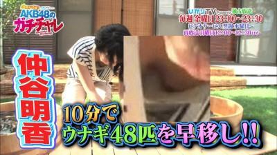 中谷朋香芸能人の胸チラのパンモロエロ画像