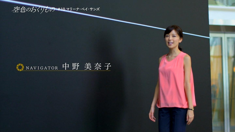 中野美奈子のエロGIFでマンコエロ