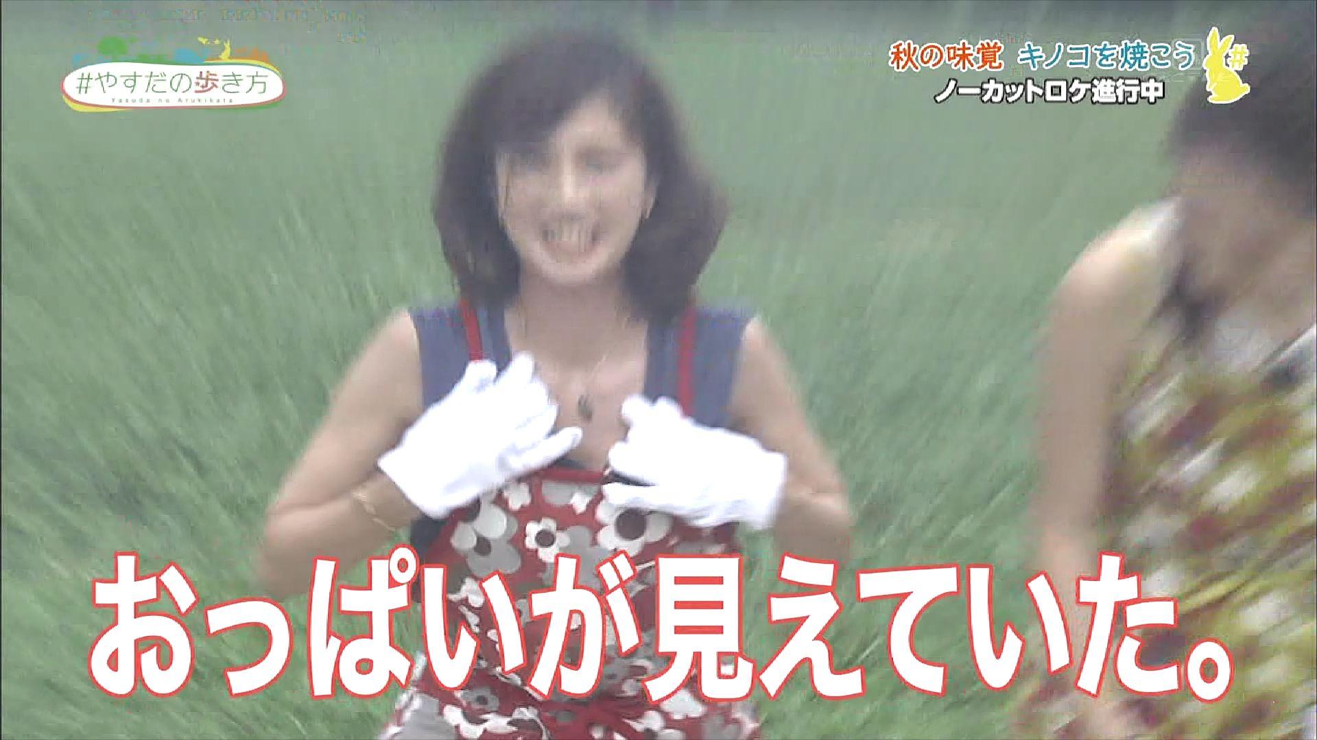 安田美沙子の乳首ポロリしたヌードエロ画像や胸チラ